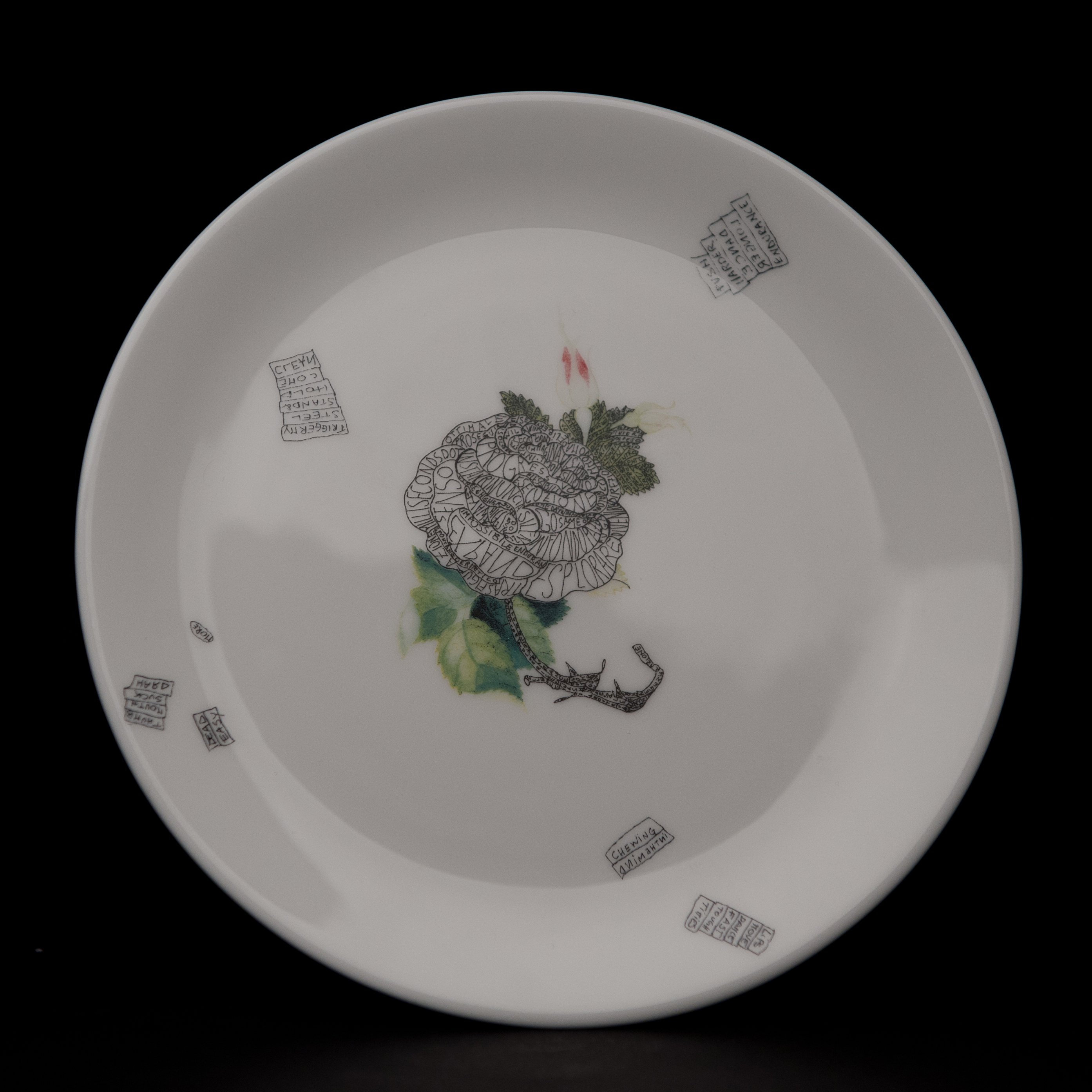 plate3va (1)