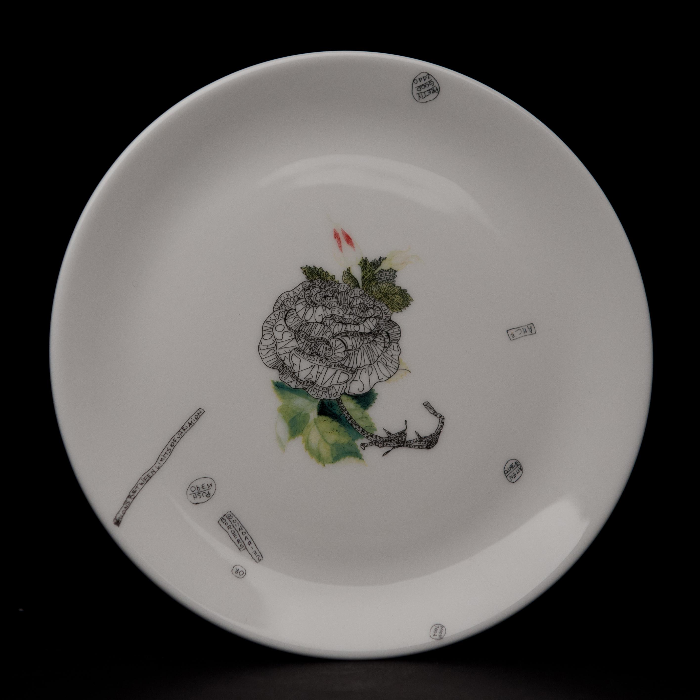plate4va (1)