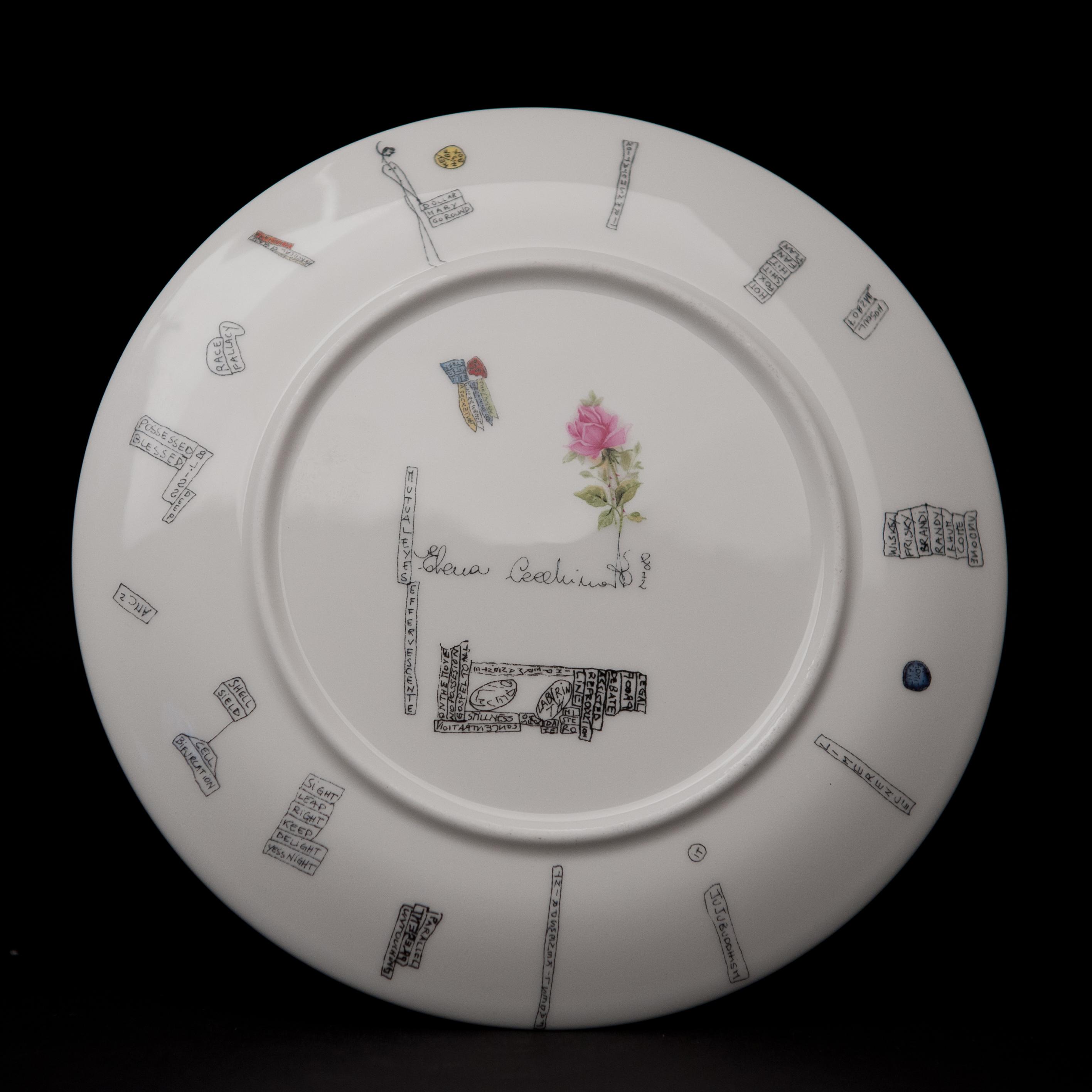 plate4vb