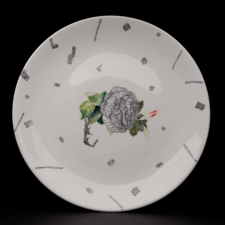 plate18va