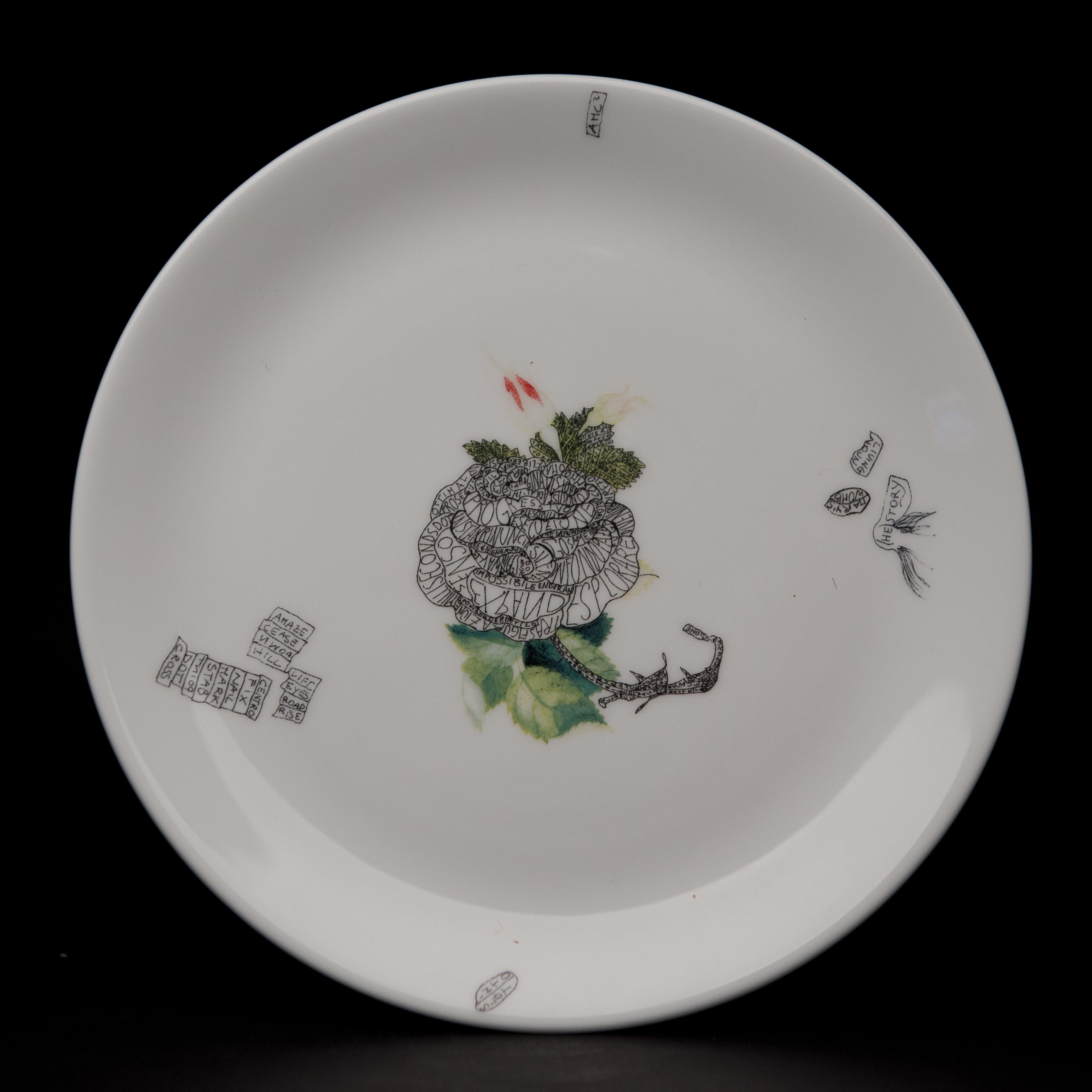 plate5va